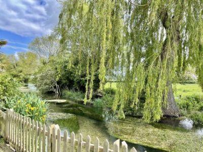 Willow Tree Lodge